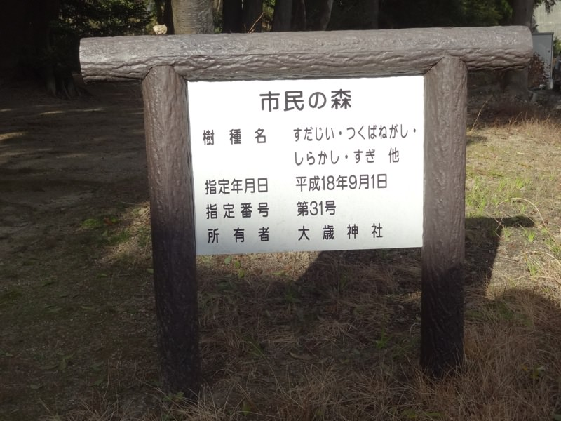 大歳大歳神社のにある木について