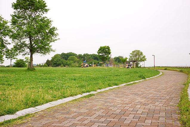 上津公園の芝生広場