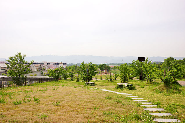 上津公園から望むイオンモールの眺め