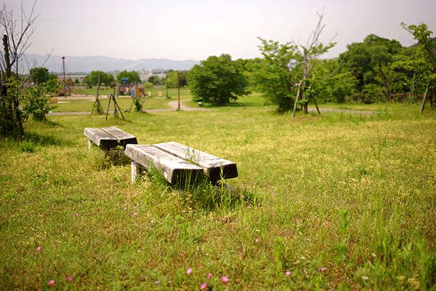 上津公園は素敵な公園ですよ!