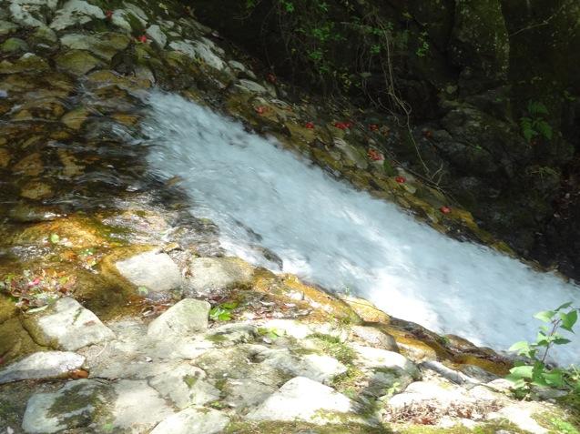 鼓ヶ滝から流れる水