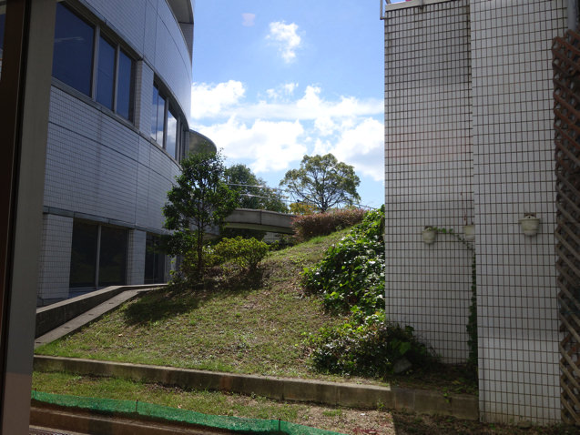 社会保険神戸中央病院 ベーカリーレストランからの眺め